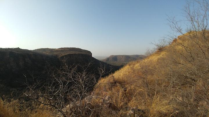 Ranthambore View