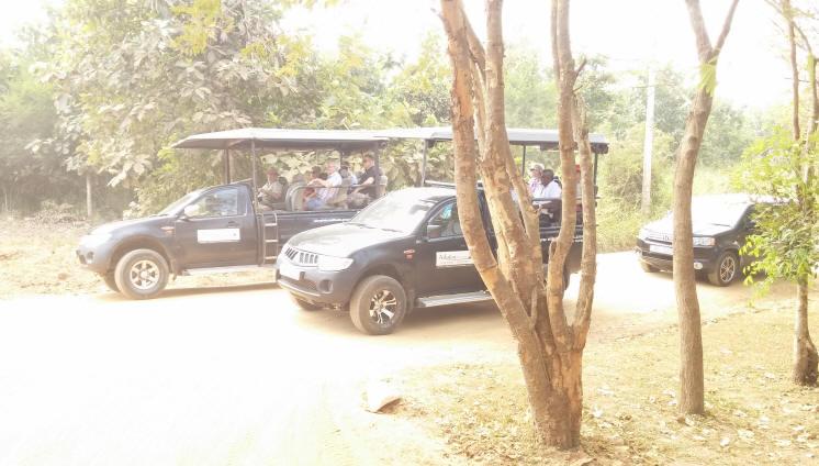 Safari Jeeps Udawalawe Park