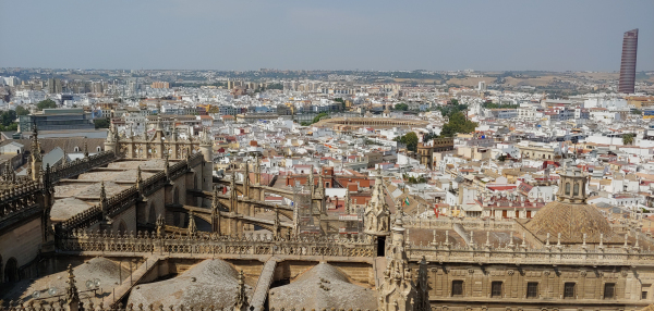 Seville View