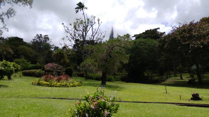 St Vincent Botanical Garden